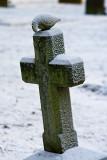 The frosty cross