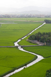 River along the rice fields