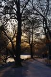 Spring evening on Norr Mälarstrand