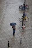 At last a rainy day
