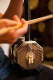 Vietnamese string instrument - Dan Nhi