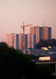 Morning sun on the high-rises
