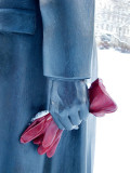 The red glove