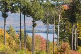 Lake George Foilage
