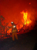 PV IC brush fire 53s area4725.jpg