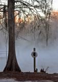 IMG_4231 fog.jpg