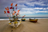Costa del Norte