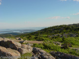 DSC04522 Acadia NP.jpg