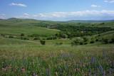 Meadows near Dârjiu (Székelyderzs)