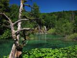 Upper lakes, Summer