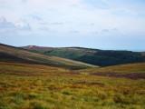 Tibradden from Glendoo Mountain