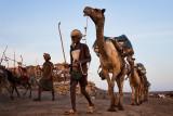 Ethiopia - The Danakil 2