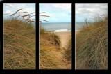 Sand dunes at Hemsby Norfolk