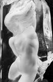 Vandable nude 01 bw