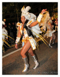 Night Carnival  2010