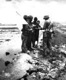 Jap naval troops surrendering on Okinawa