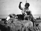 Tanker with puppies