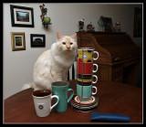 Milo Wants Some Tea.jpg