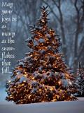 Oh Christmas Tree_greeting.jpg