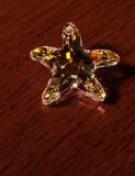 Shining Star.jpg