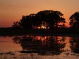 Sunset at Carlos Avery