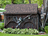 Old Shed as Lawn Scape.jpg