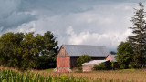 Faded Barn in Corn Field rp.jpg