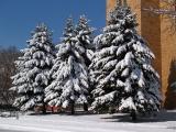 Perfect SkyPerfect Snow Perfect Sunshine