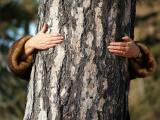 Me the Tree Lover