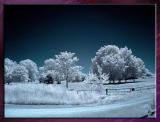 Diverses_Infrared_Infrarouge_03.jpg
