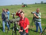 2008 Roodkopklauwier