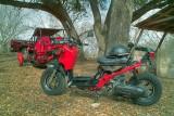 SDIM2753_4_5 - Honda Ruckus