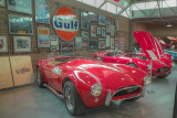 SDIM5478_79_80 - Cobras in the Miller museum