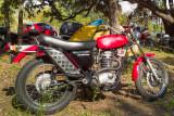 SDIM1338_39_40 - BSA