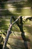 Wood on wood