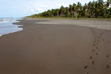 Costa Rica 368.jpg