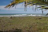 Costa Rica 388.jpg