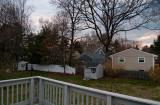Backyard - 0428