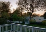 Backyard - 0513