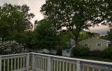 Backyard - 0526