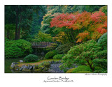 Garden Bridge.jpg