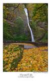 Horstail Falls.jpg