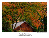 Barn In Fall Colors.jpg