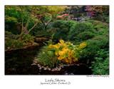 Leafy Shores.jpg