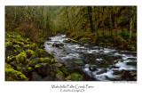 Wahclella Falls Creek Pano.jpg