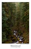 Multnomah Creek.jpg