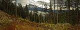 Mt. Hood 1.jpg
