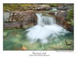 Baring Creek.jpg (Up To 20 x 30)