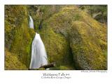Wahkeena Falls 4.jpg