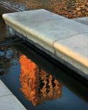 Royce Hall reflection in the Shapiro Fountain UCLA